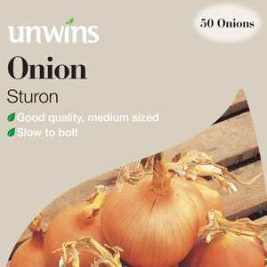 Unwins Onions Sturon (Sturron) Sets/Bulbs 50 Per Pack