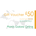 50 Pound Gift Voucher for Plants Galore Online